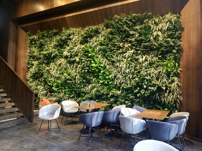 室内绿植设计景观